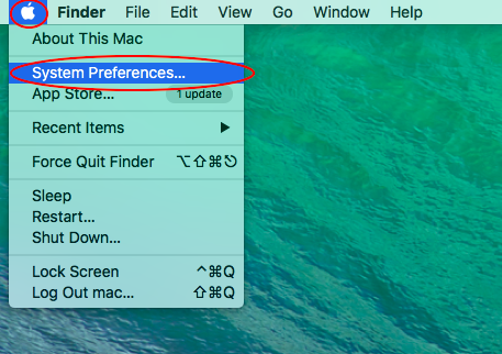 Select 'System Preferences' from the Apple menu
